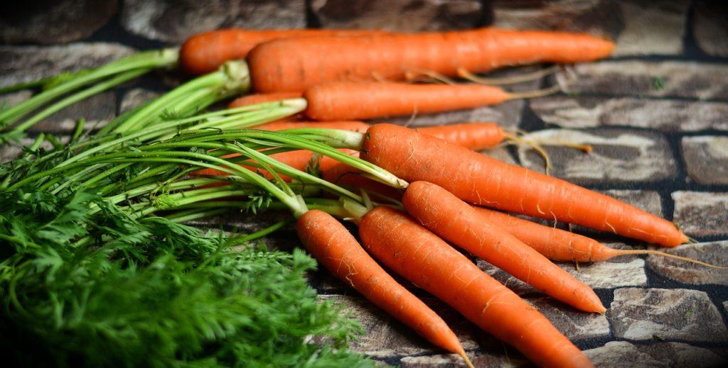 野菜の食物繊維が健康にいい理由