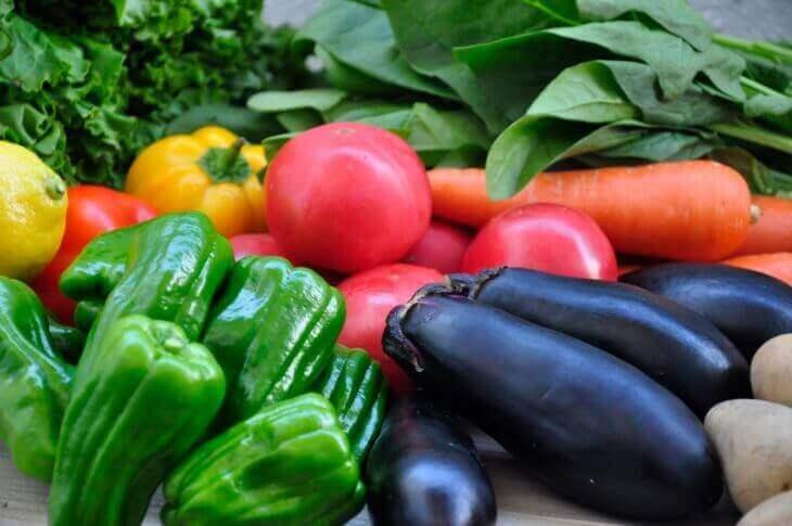 野菜で腸内環境を整える
