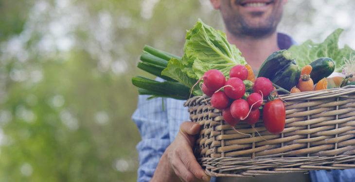 JA全農連の野菜・果物の定義
