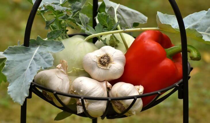 ニンニクのすごい栄養素・効果効能を紹介!
