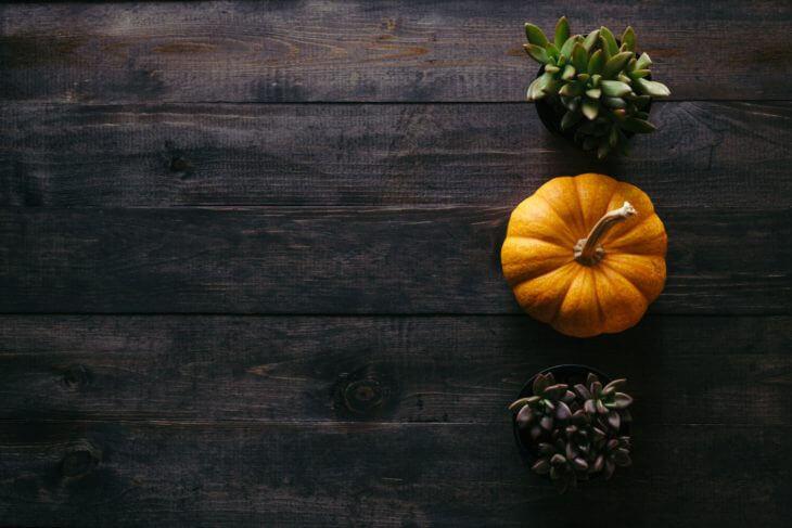 かぼちゃの保存方法と賞味期限