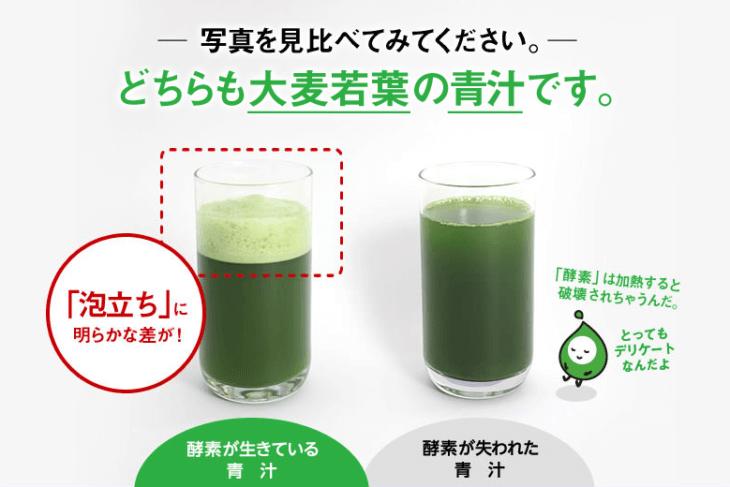リッチグリーンの酵素