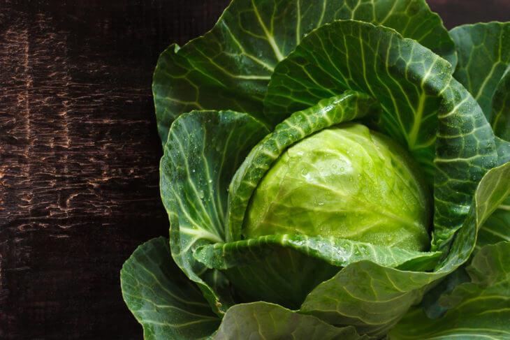キャベツはダイエットの向いた野菜?