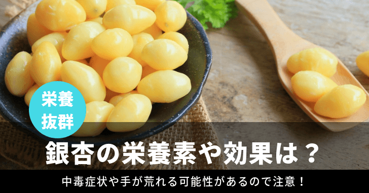 銀杏の栄養や効果効能を紹介!中毒症状があるのは本当?匂いの原因?